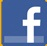 small Facebook F logo